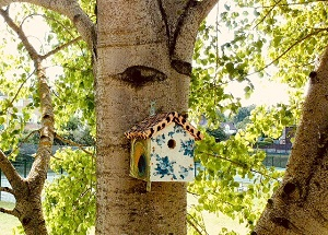 Decorated bird box in a tree at Memorial Park in Redhill