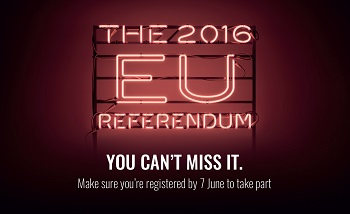 The 2016 EU Referendum - you can't miss it! infographic
