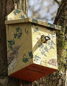 The first resident of the bird box trail, a Great Tit, makes itself at home (picture credit Elizabeth O'Reilly)