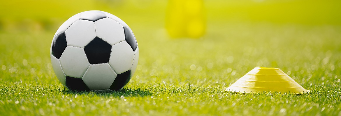 Are you involved in a football club or another sport that uses sports pitches?
